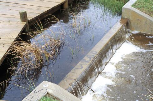 CSIRO_ScienceImage_4479_Stormwater_runoff_at_the_Paddocks_wetland_in_the_northern_Adelaide_suburb_of_Salisbury_SA_1995