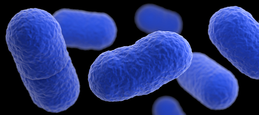 Preventing Listeria Outbreaks in Food Facilities 1