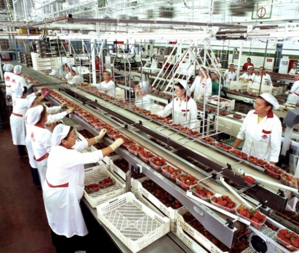 The Importance of Floor Drainage When it Comes to Food Safety 1